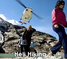 Heli Hiking near Banff National Park