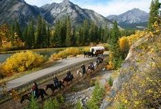 Horseback Rides Banff